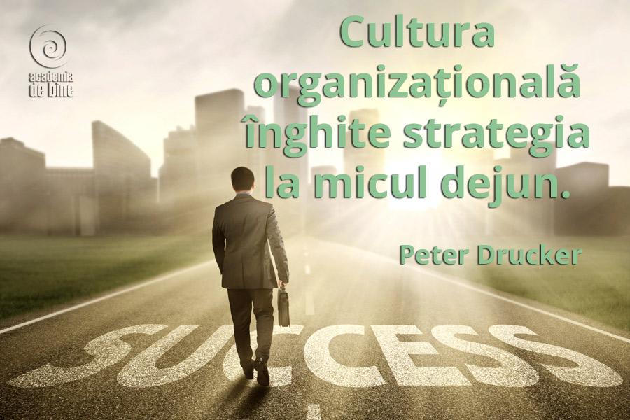 Cultura organizationala si strategia
