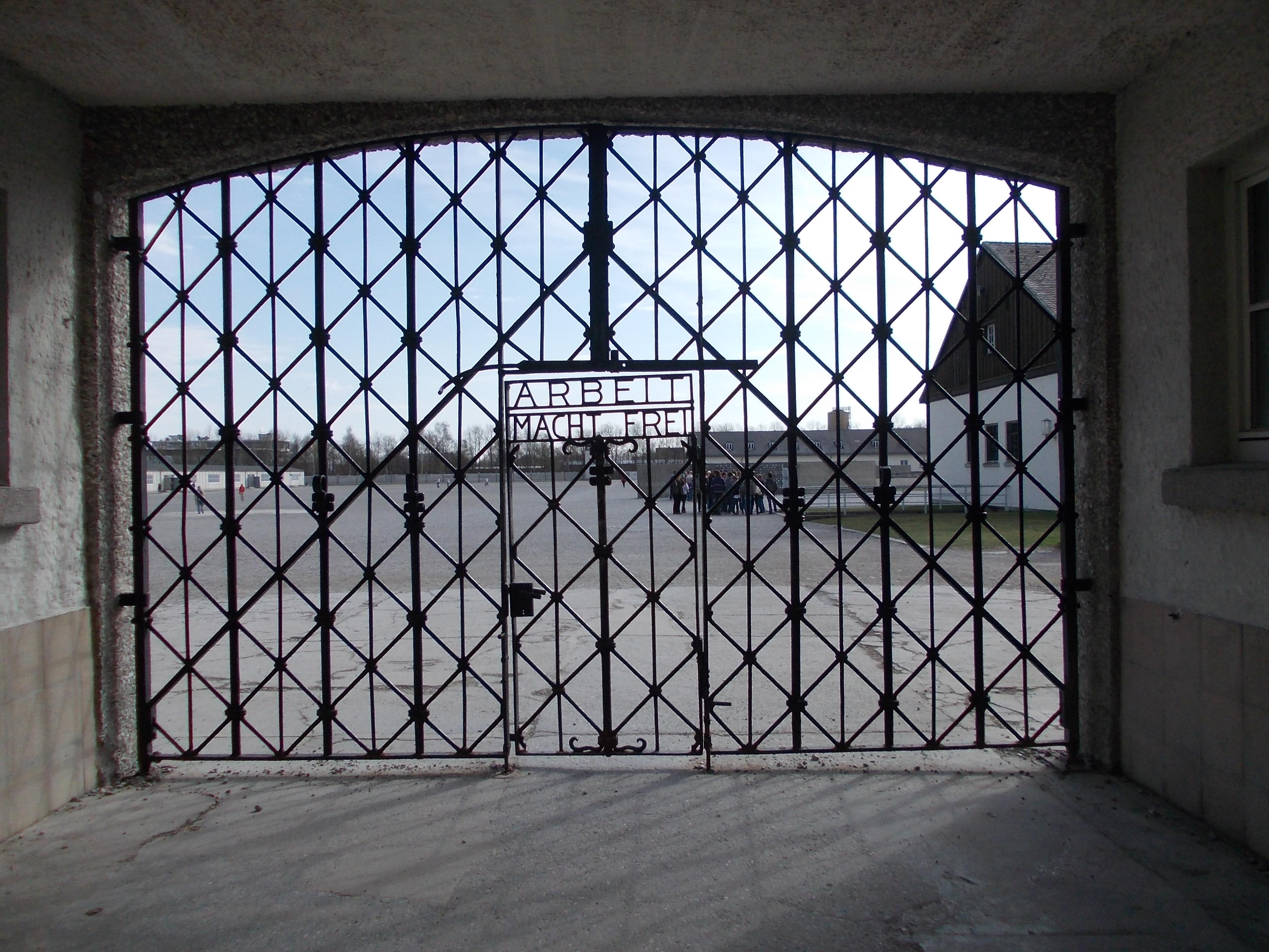 Dacă aș ști să ascult plopii din Dachau